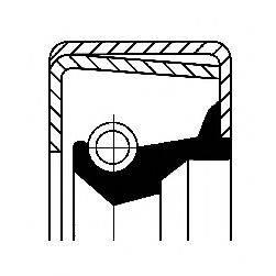 Уплотняющее кольцо, ступица колеса CORTECO 12011398B