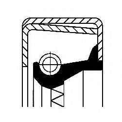 Уплотняющее кольцо, ступица колеса CORTECO 12001579B